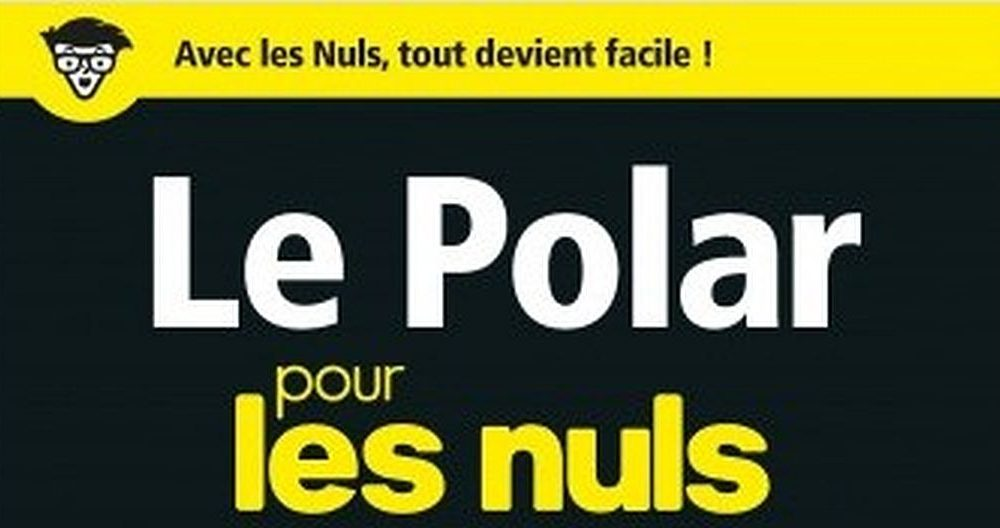 Le Polar Pour Les Nuls Editions First Stephenking Header
