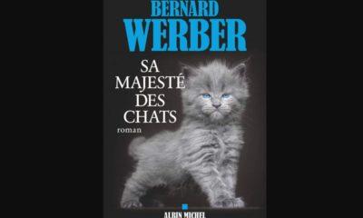Bernardwerber Sa Majeste Des Chats 2019 Header