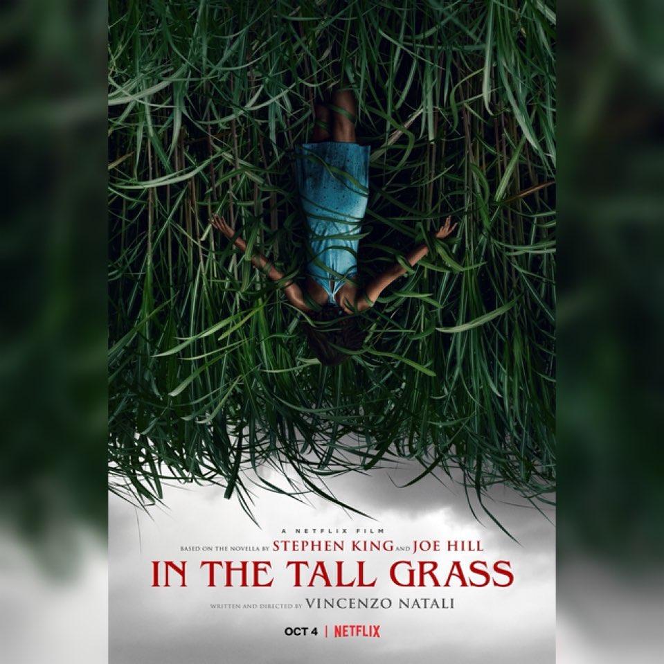 Dansleshautesherbes Inthetallgrass Trailer Stephenking Joehill 2