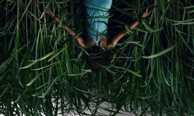 Inthetallgrass Movieposter