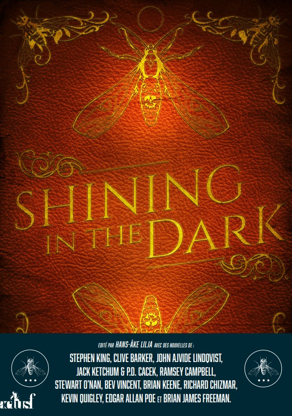 Shininginthedark Livre Stephenking Lilja V2