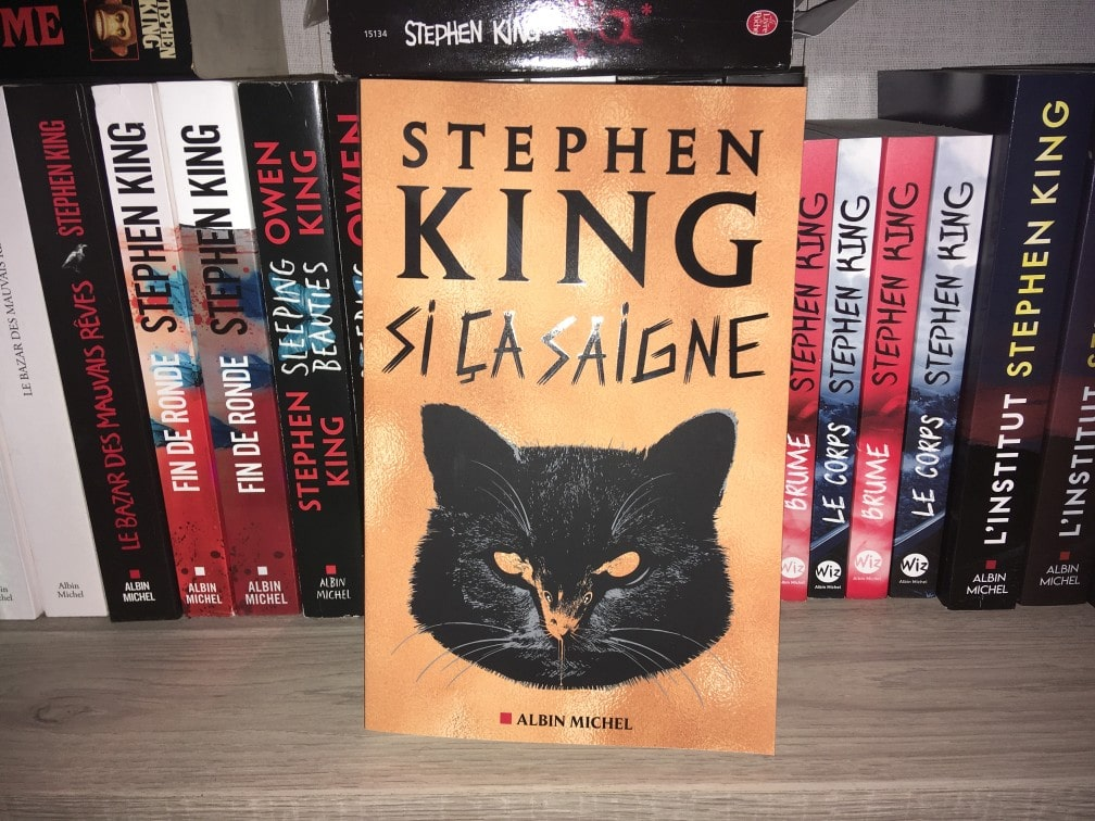 Stephenking Sicasaigne Albinmichel