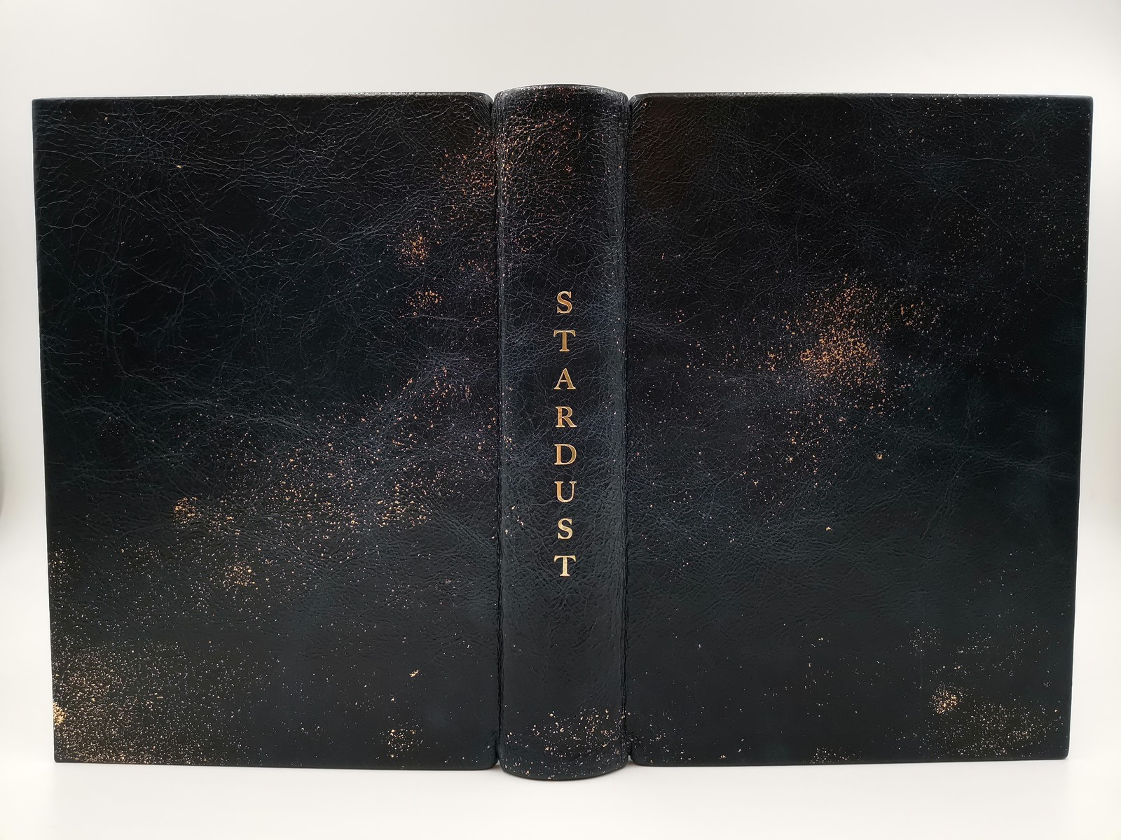 Stardust Neilgaiman Leather Lyrasbooks