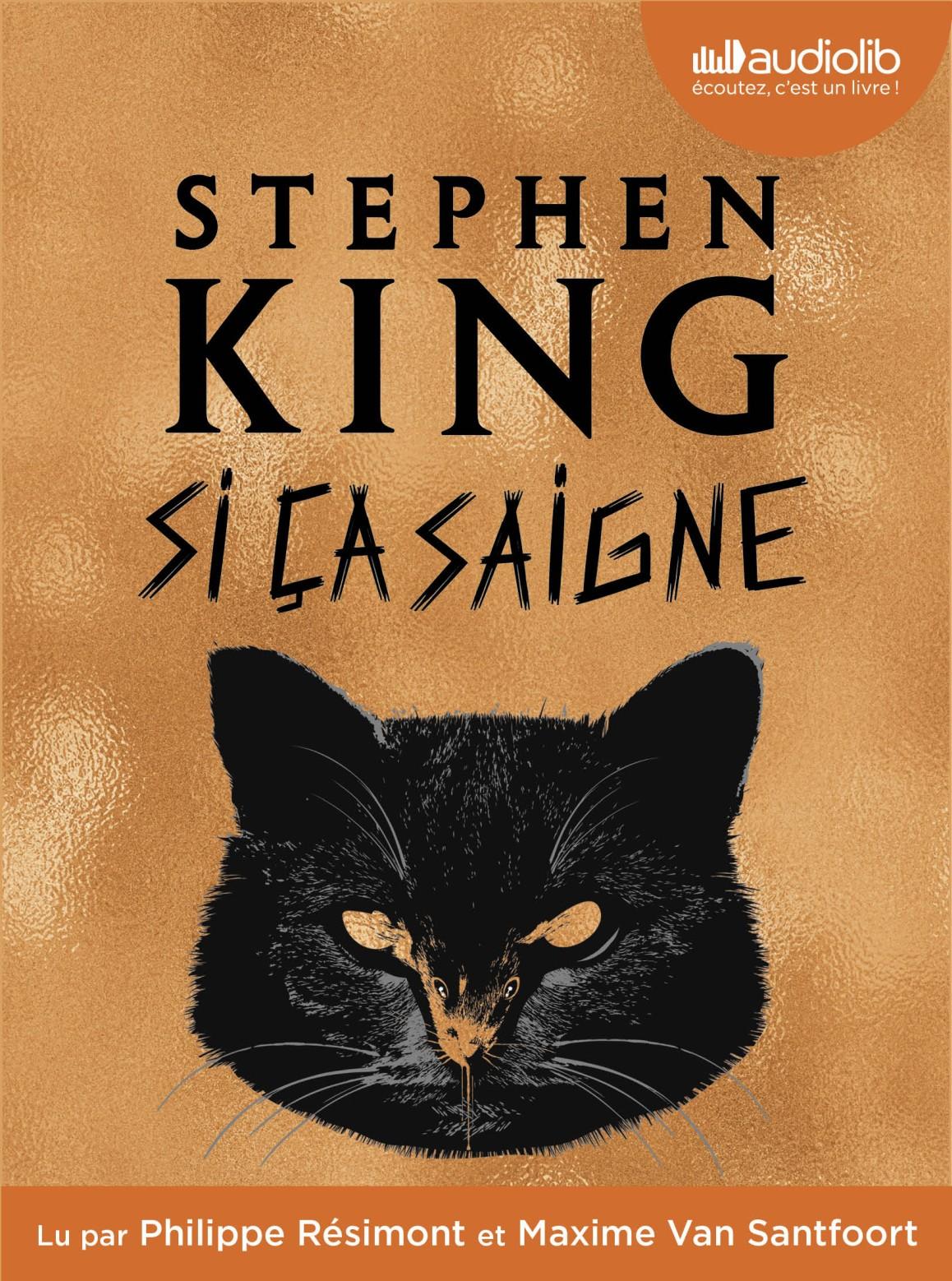 Sicasaigne Stephenking Livre Audio Audiolib