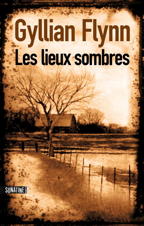 Gillian-Flynn--Lieux-Sombres.jpg
