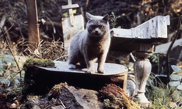 [petsematary movie]