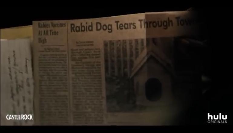 Rabid Dog Tears Cujo Castlerock